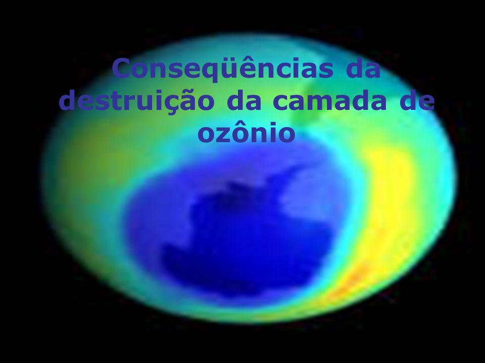 Conseqüências da destruição da camada de ozônio