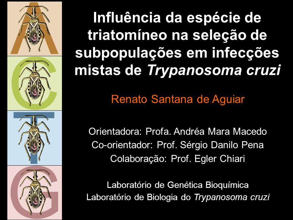 Influência da espécie de triatomíneo na seleção de subpopulações em infecções mistas de Trypanosoma cruzi