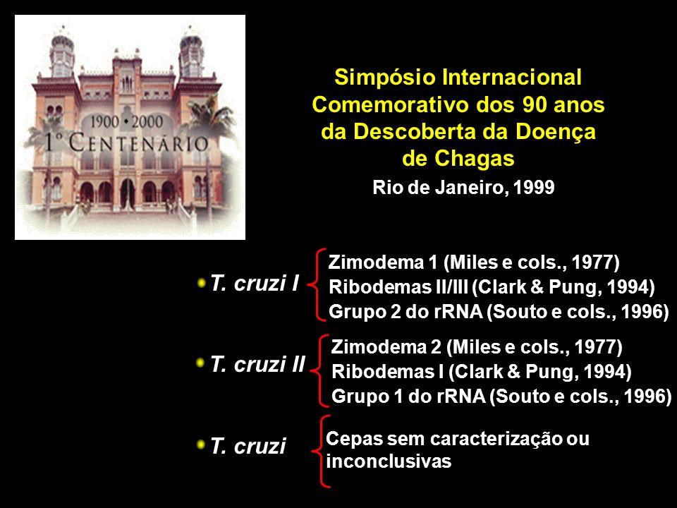 Simpósio Internacional Comemorativo dos 90 anos da Descoberta da Doença de Chagas