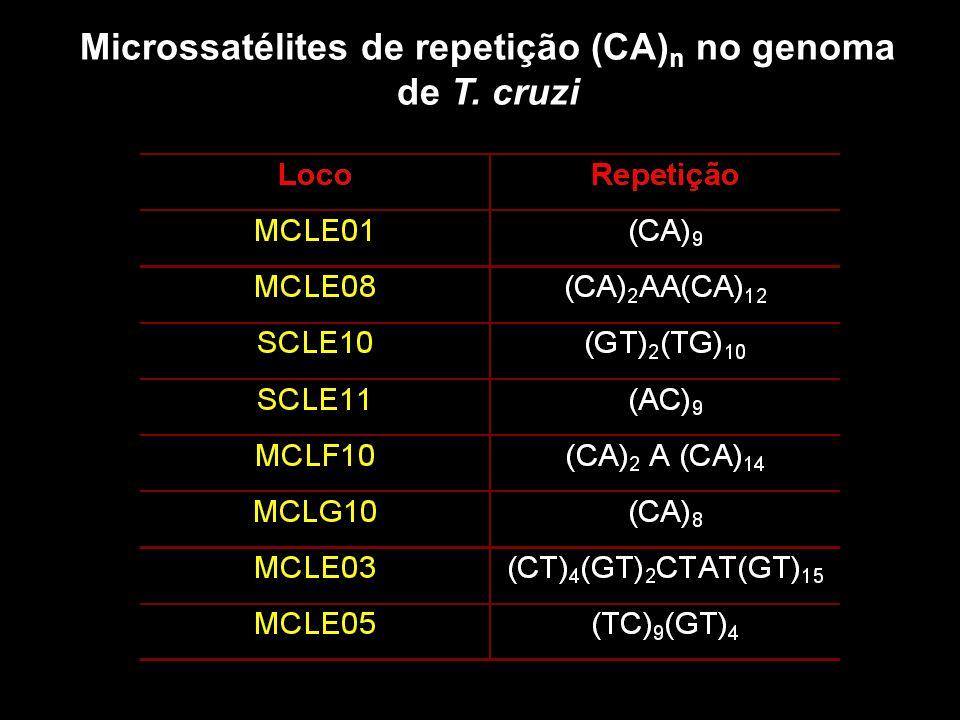 Microssatélites de repetição (CA)n no genoma de T. cruzi