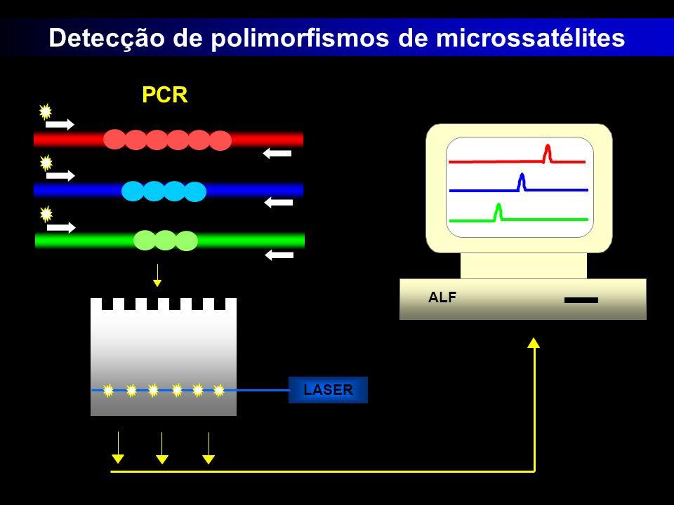 Detecção de polimorfismos de microssatélites