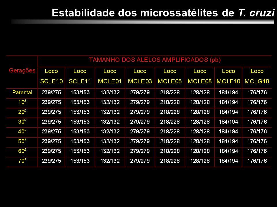 Estabilidade dos microssatélites de T. cruzi