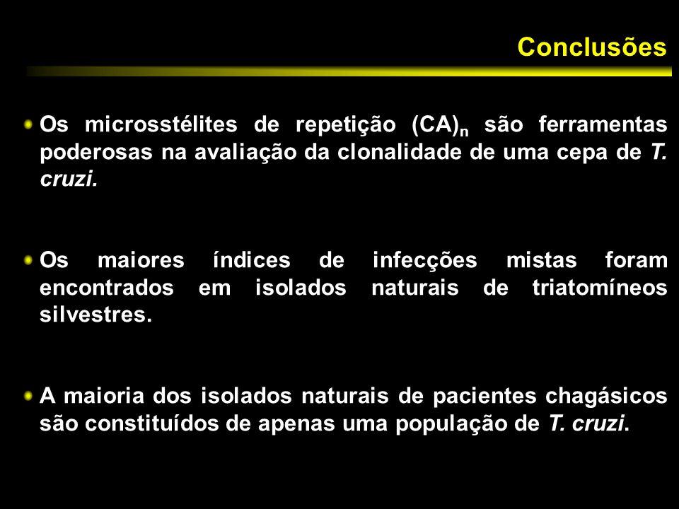 Conclusões Os microsstélites de repetição (CA)n são ferramentas poderosas na avaliação da clonalidade de uma cepa de T. cruzi.