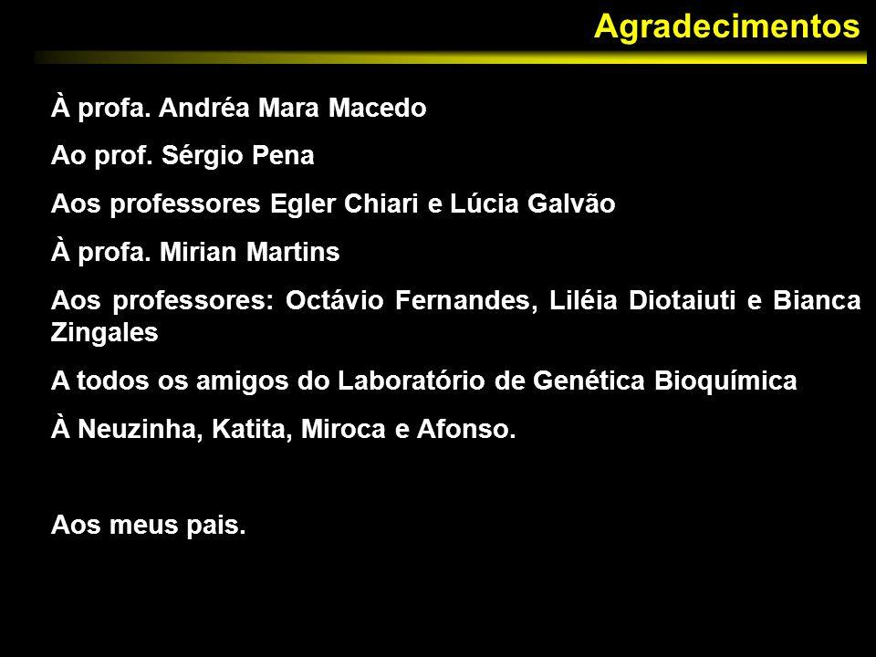 Agradecimentos À profa. Andréa Mara Macedo Ao prof. Sérgio Pena