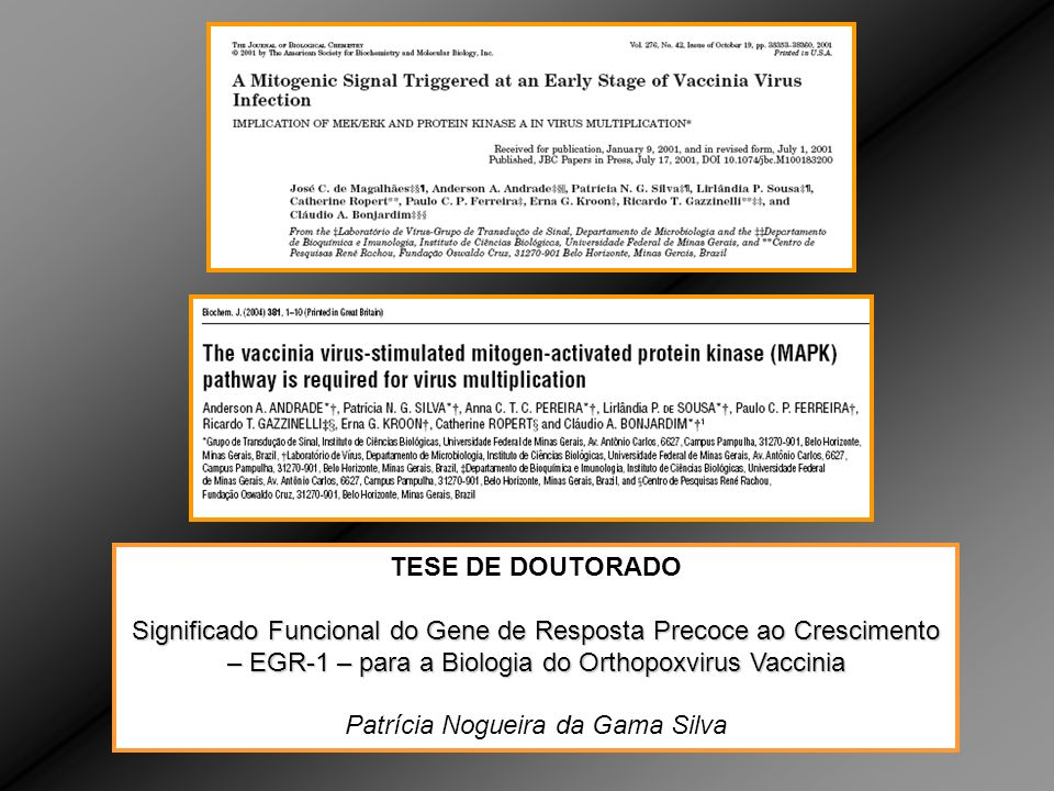 Patrícia Nogueira da Gama Silva