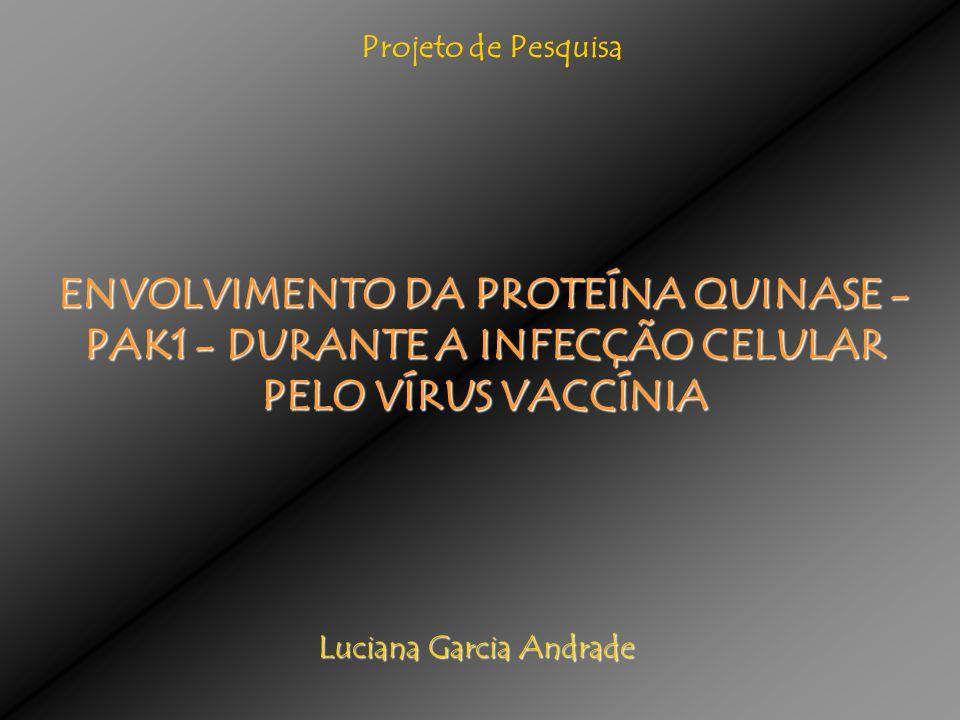 Luciana Garcia Andrade