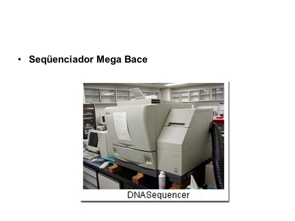 Seqüenciador Mega Bace