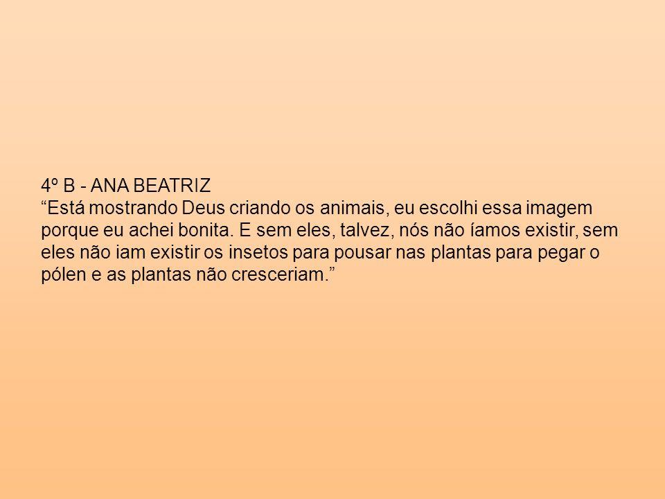 4º B - ANA BEATRIZ