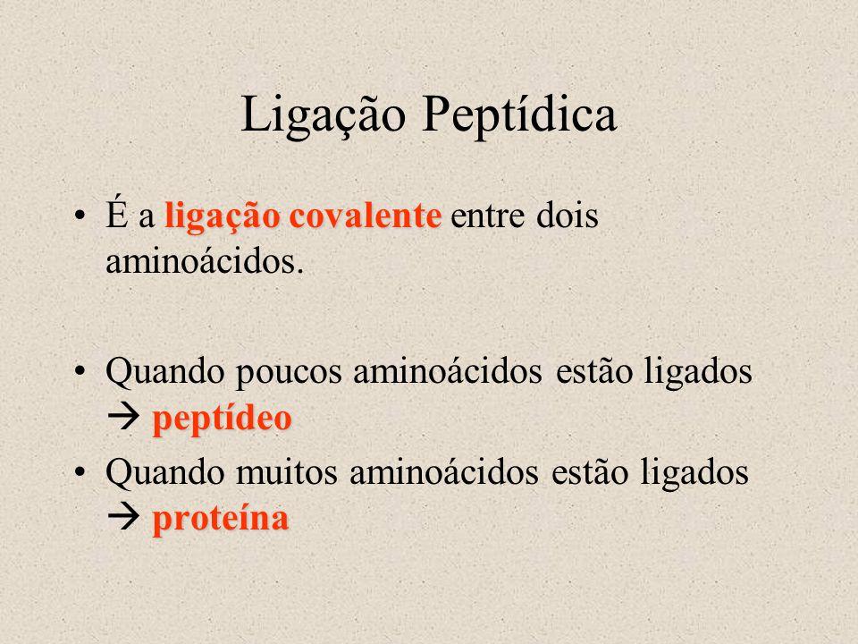 Ligação Peptídica É a ligação covalente entre dois aminoácidos.