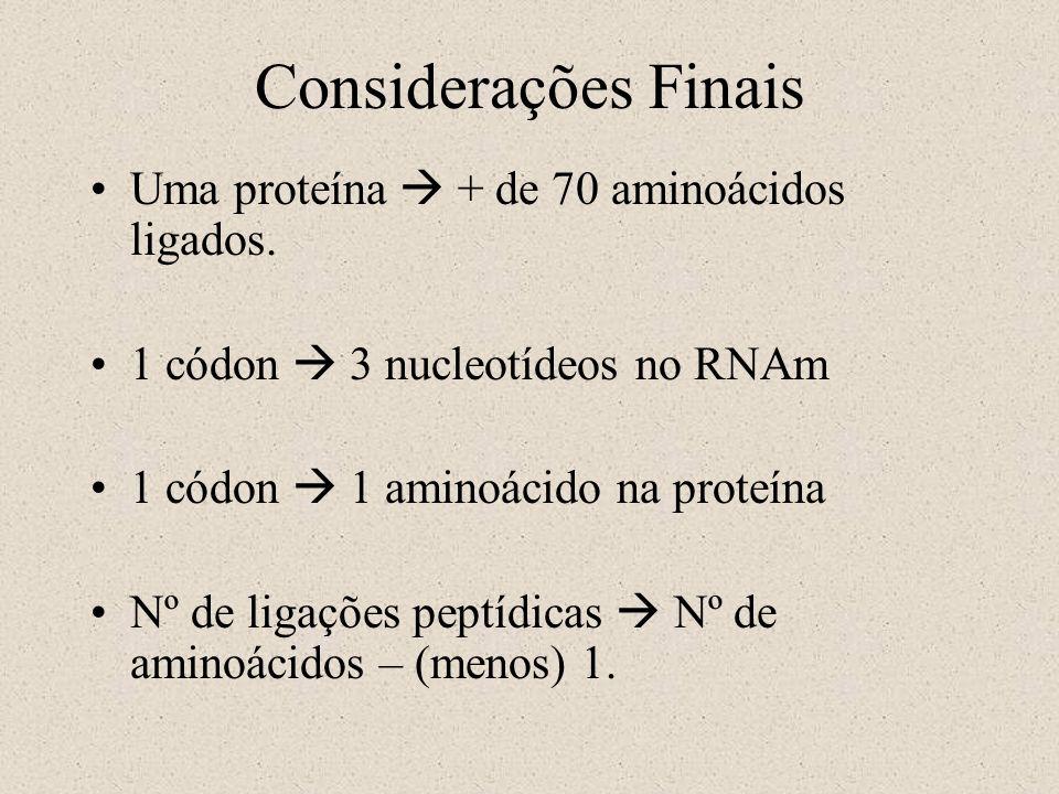 Considerações Finais Uma proteína  + de 70 aminoácidos ligados.
