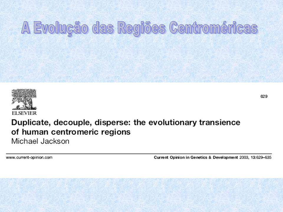 A Evolução das Regiões Centroméricas