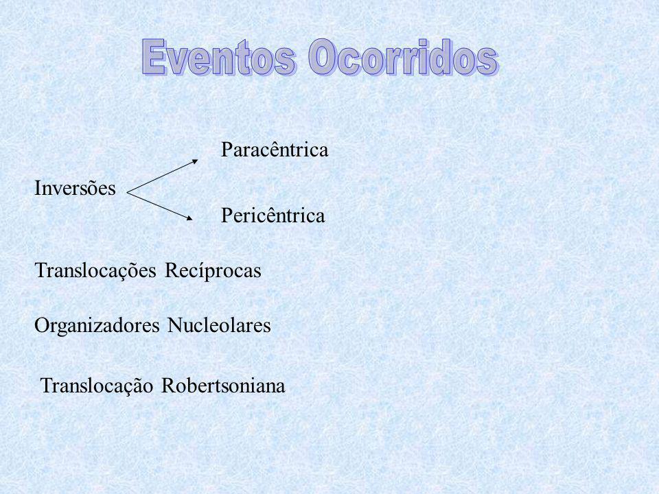Eventos Ocorridos Paracêntrica Inversões Pericêntrica