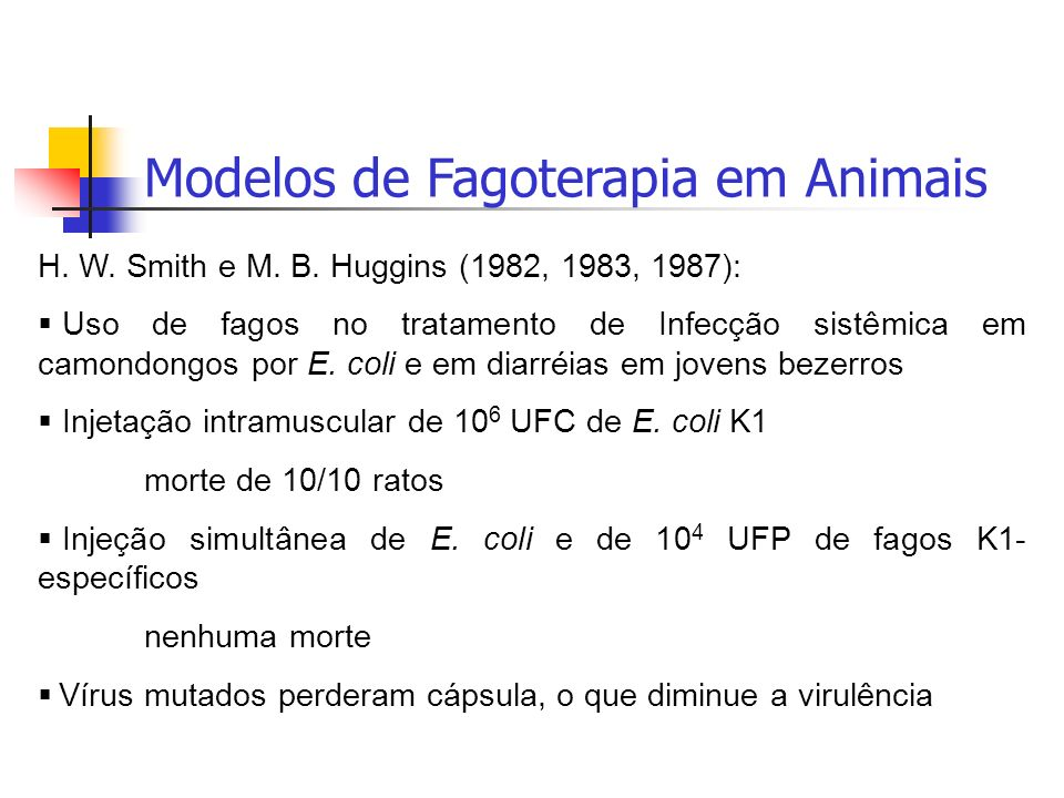 Modelos de Fagoterapia em Animais