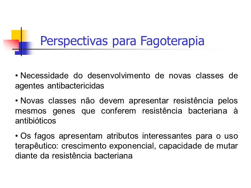 Perspectivas para Fagoterapia