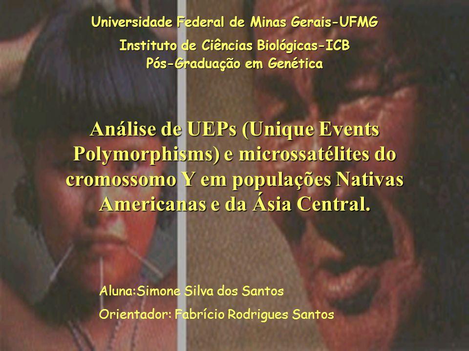 Universidade Federal de Minas Gerais-UFMG