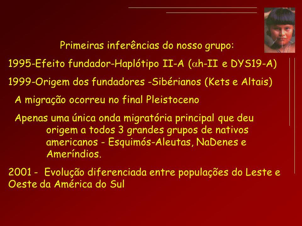 Primeiras inferências do nosso grupo: