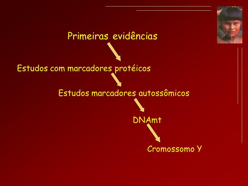 Primeiras evidências Estudos com marcadores protéicos