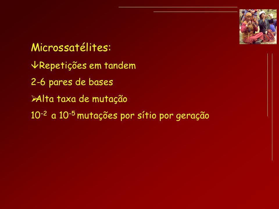 Microssatélites: Repetições em tandem 2-6 pares de bases