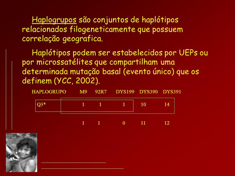 Haplogrupos são conjuntos de haplótipos relacionados filogeneticamente que possuem correlação geografica.