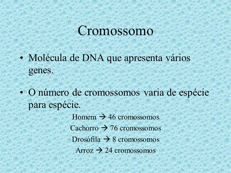 Cromossomo Molécula de DNA que apresenta vários genes.