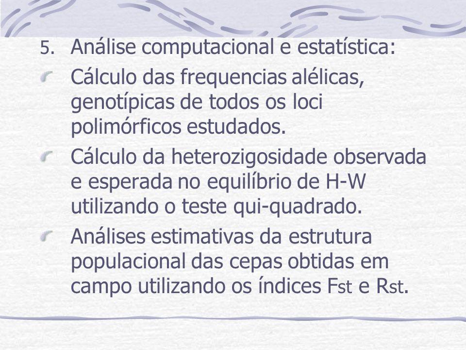 Análise computacional e estatística: