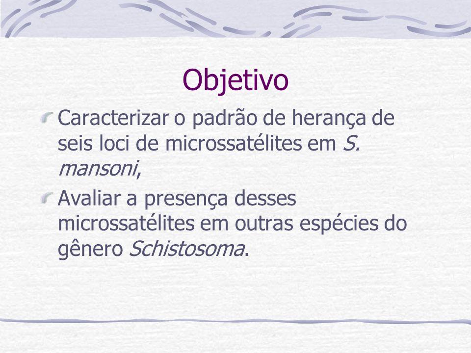 Objetivo Caracterizar o padrão de herança de seis loci de microssatélites em S. mansoni,