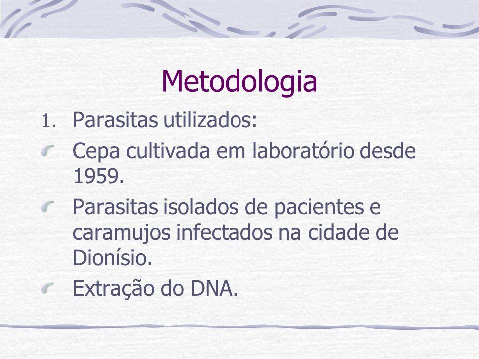 Metodologia Parasitas utilizados: