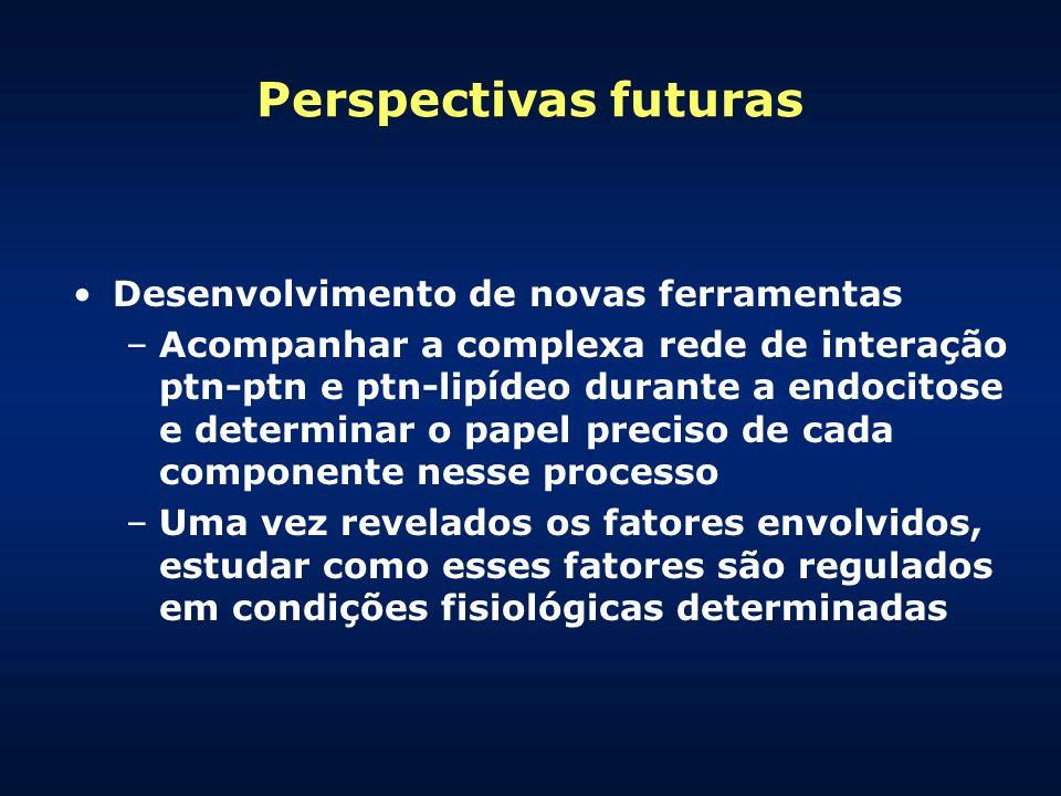 Perspectivas futuras Desenvolvimento de novas ferramentas