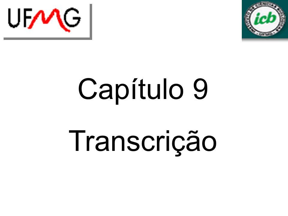 Capítulo 9 Transcrição LGCM URLGA