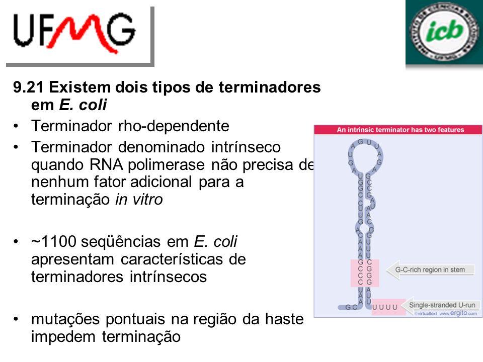 9.21 Existem dois tipos de terminadores em E. coli