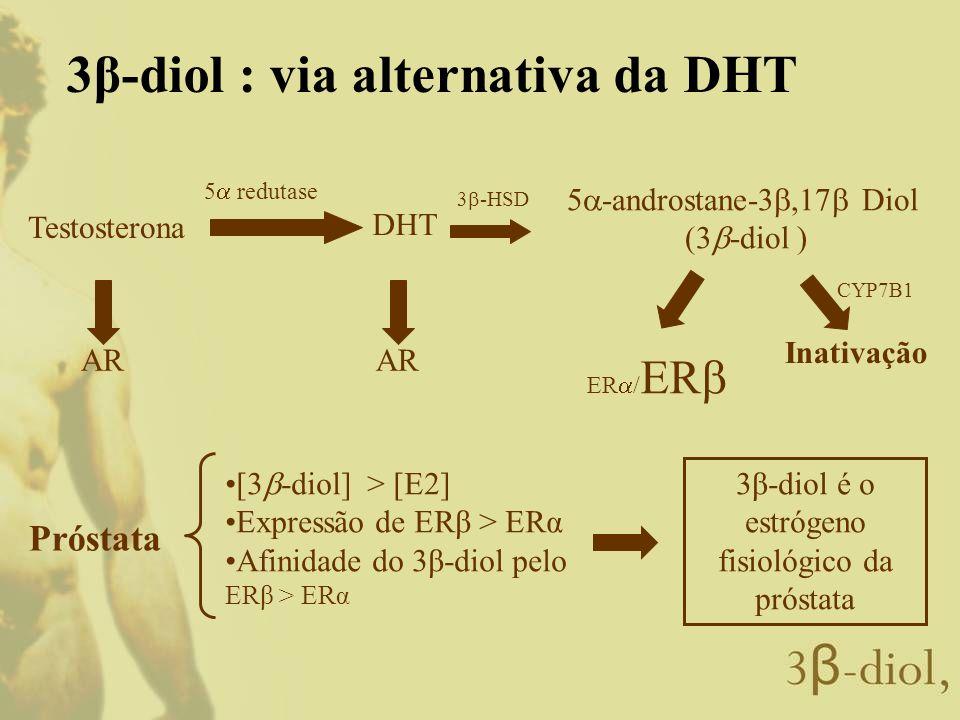 3β-diol é o estrógeno fisiológico da próstata