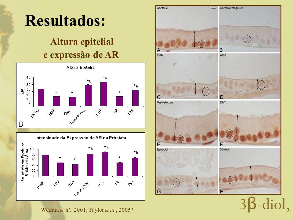 Resultados: Altura epitelial e expressão de AR B