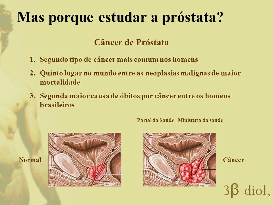 Mas porque estudar a próstata