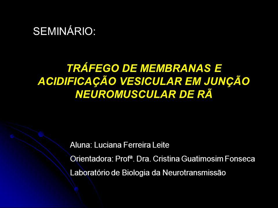SEMINÁRIO: TRÁFEGO DE MEMBRANAS E ACIDIFICAÇÃO VESICULAR EM JUNÇÃO NEUROMUSCULAR DE RÃ. Aluna: Luciana Ferreira Leite.