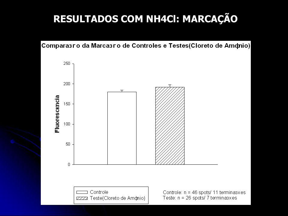 RESULTADOS COM NH4Cl: MARCAÇÃO