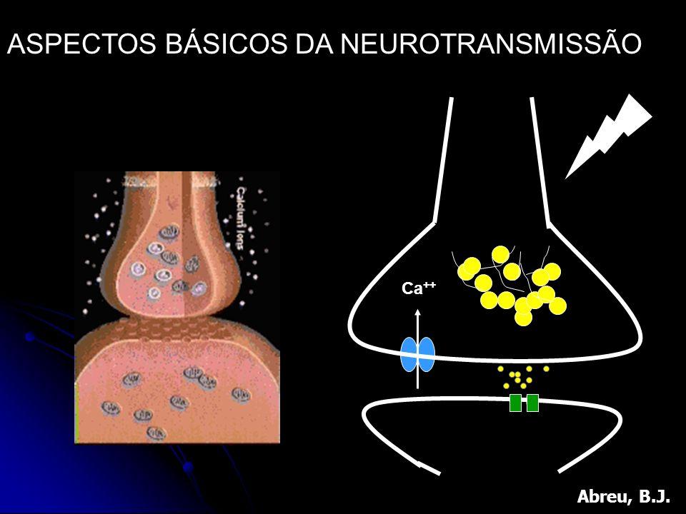ASPECTOS BÁSICOS DA NEUROTRANSMISSÃO