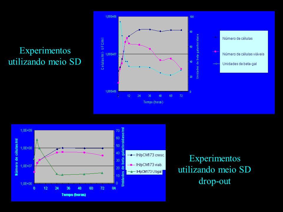 Experimentos utilizando meio SD