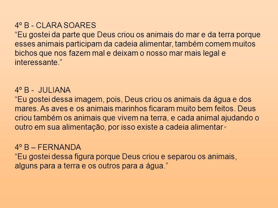 4º B - CLARA SOARES