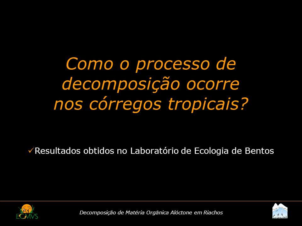 Como o processo de decomposição ocorre nos córregos tropicais