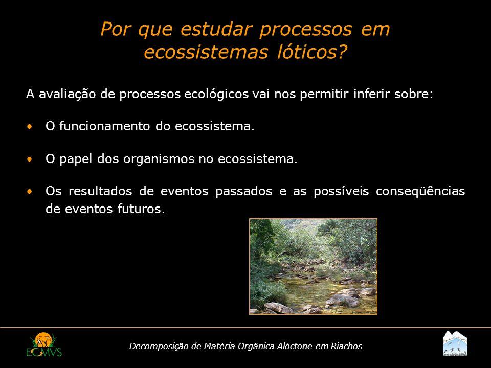 Por que estudar processos em ecossistemas lóticos
