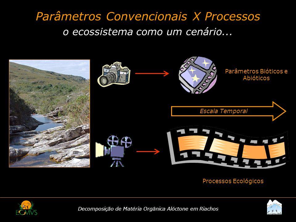 Parâmetros Convencionais X Processos o ecossistema como um cenário...