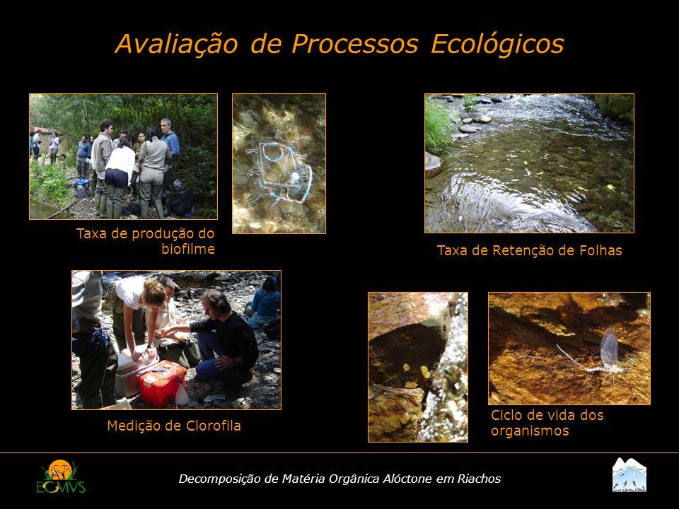 Avaliação de Processos Ecológicos