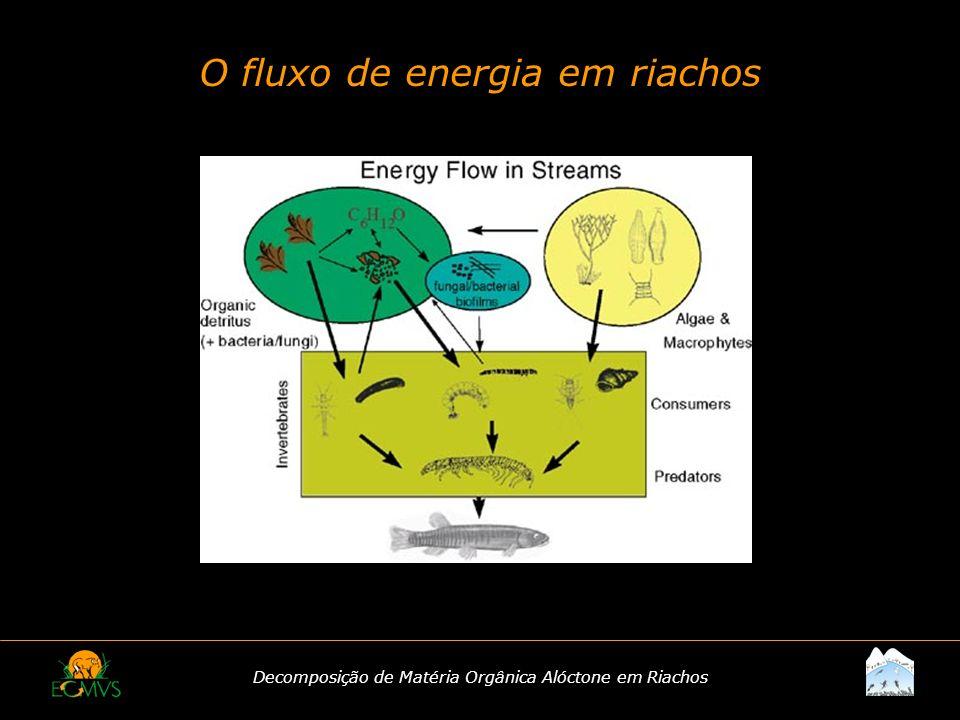 O fluxo de energia em riachos