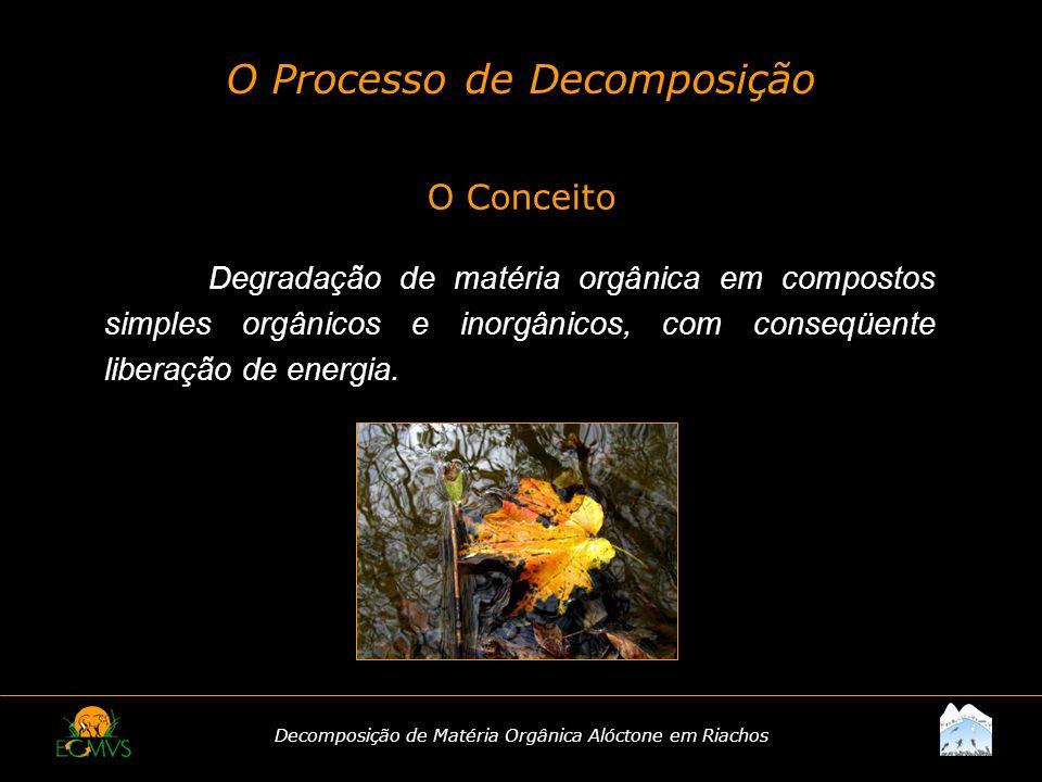 O Processo de Decomposição
