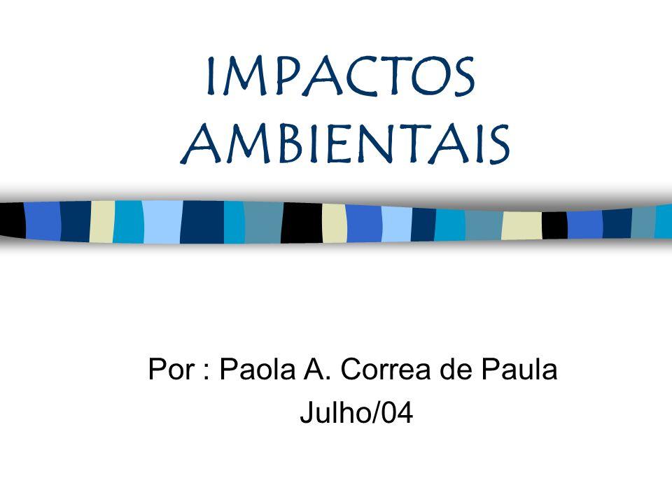 Por : Paola A. Correa de Paula Julho/04