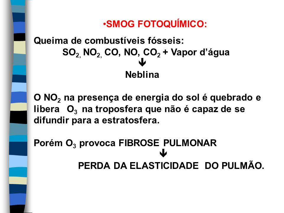 SMOG FOTOQUÍMICO: Queima de combustíveis fósseis: SO2, NO2, CO, NO, CO2 + Vapor d'água.  Neblina.