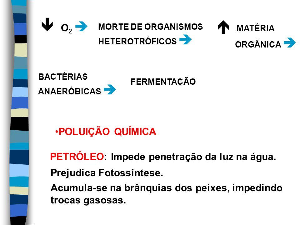  O2   MATÉRIA POLUIÇÃO QUÍMICA