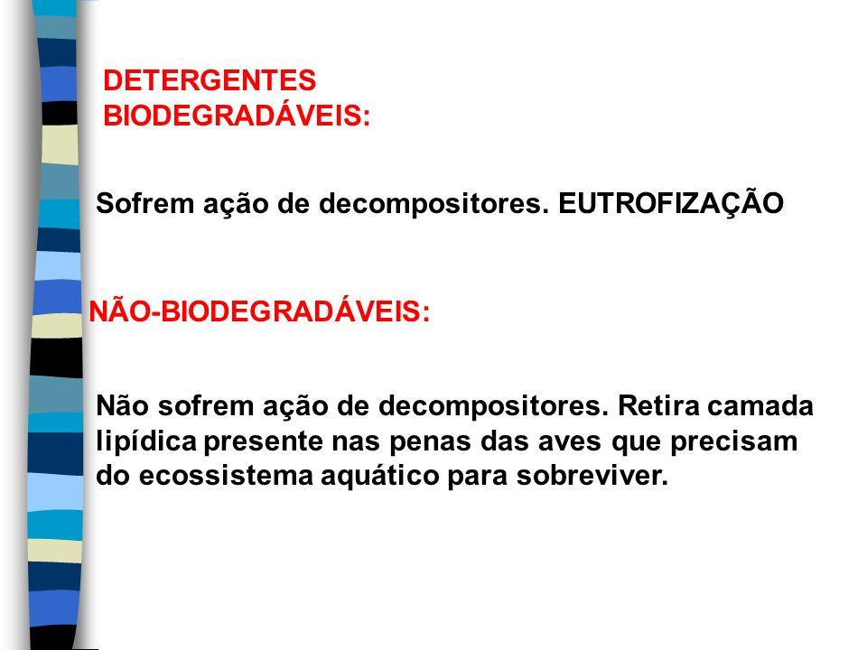 DETERGENTES BIODEGRADÁVEIS: Sofrem ação de decompositores. EUTROFIZAÇÃO. NÃO-BIODEGRADÁVEIS: Não sofrem ação de decompositores. Retira camada.