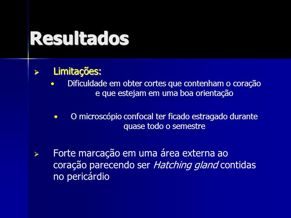 Resultados Limitações: