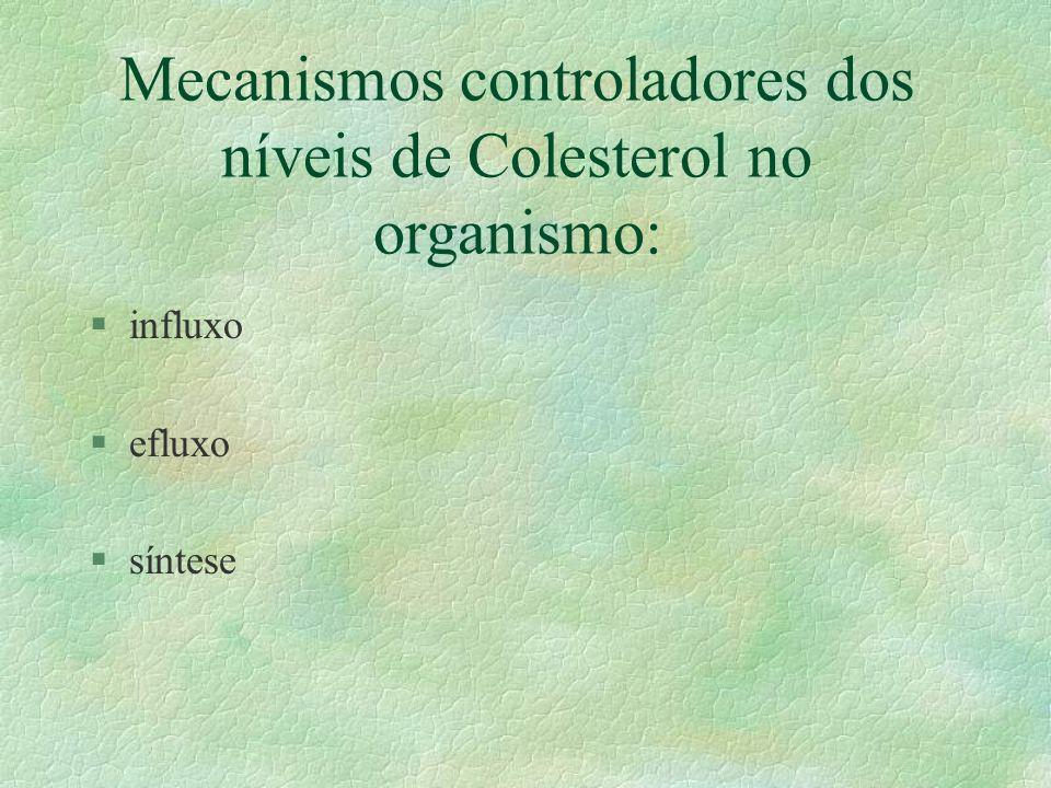 Mecanismos controladores dos níveis de Colesterol no organismo: